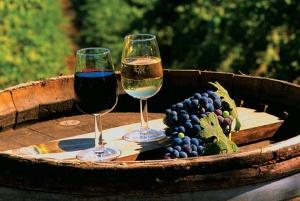 Колыбель вина